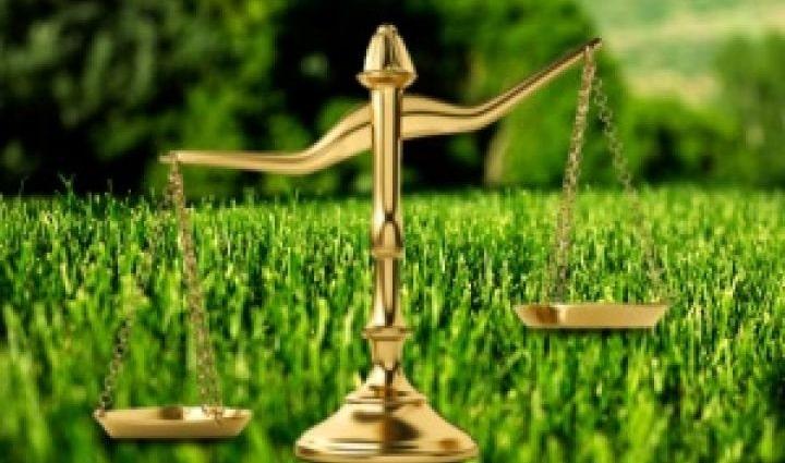 Судебная практика по гражданским делам