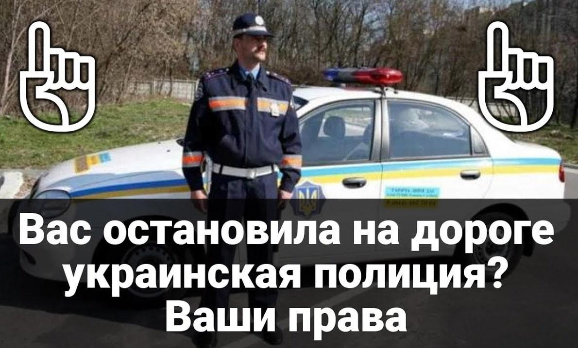 В каких случаях полиция может проверять документы на авто