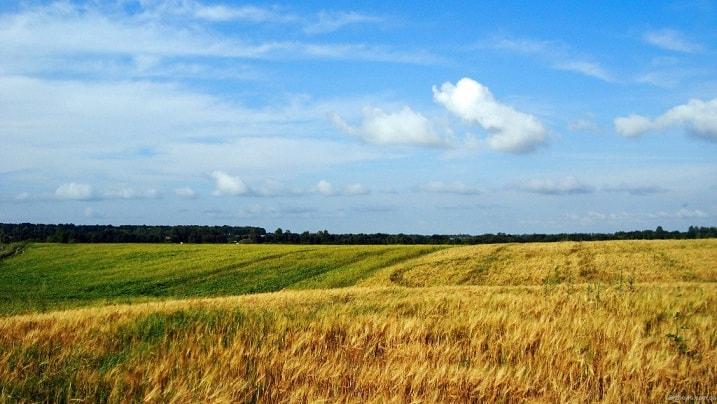 Правовий супровід земельних питань в Києві